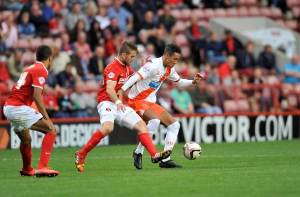 Tom Ince Blackpool Focus