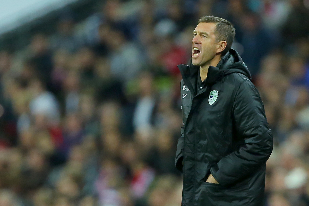 Manager of Slovenia, Srecko Katanec during the UEFA Euro 2016 Qualifying match at Wembley Stadium, London Picture by Richard Calver/Focus Images Ltd +447792 981244 15/11/2014