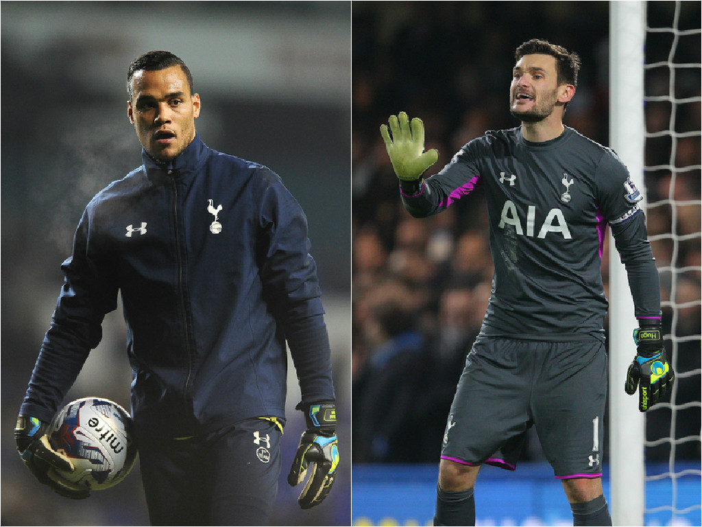 vormlloris focus marcadorint